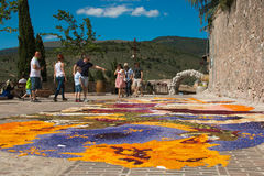 Design Made With Flower Petals At Infiorata Feast Of Spello Royalty Free Stock Photos