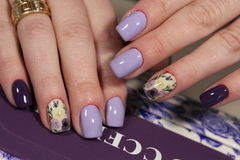 Design of manicure purple with a pattern of flowers. Here is presented one of the best manicure designs this year& x27;s Nail royalty free stock image