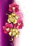 Design med orkidér vektor illustrationer