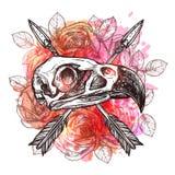 Design mit Eagle Skull And Arrows Lizenzfreie Stockfotografie