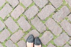 Design och woman& x27 för trottoar för textur för grässtengolv; s-fot Arkivfoto