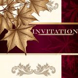 Design Of Luxury Invitation Card In Vintage Style With Maple Lea Stock Photography