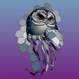 Design owl. vector illustration