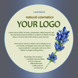 Design of a package for cosmetics products with lavender Stock Photo
