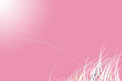 Design pink color. For background Stock Images