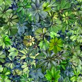 Seamless pattern, leaves, summer, green, blue, heat, flora, wall. Design: a seamless pattern of rounded green leaves of tropical plants. Designed for printing on stock image