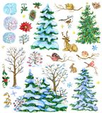 Design set with fir trees, decorated conifers, poinsettia, pine cones, nature Christmas elements stock illustration