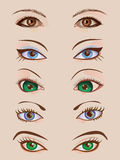Design set of five pairs of female eyes Royalty Free Stock Image