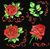 Design set with red roses and curved lace Stock Image