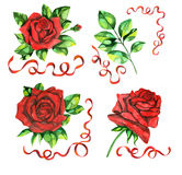 Design set with roses Royalty Free Stock Photography