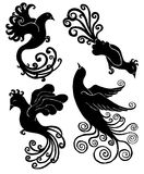 Design set with silhouettes of fantastic birds Royalty Free Stock Image