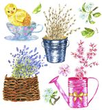 Design set with vintage objects, chicken, spring flowers, lavender and willow royalty free stock photo