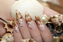 Design with small shells. Design with small shells inside the nail and white flourishes royalty free stock images