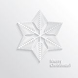 Design Snowflake Stock Photography