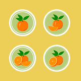 Design Stickers with Juicy Orange Stock Image