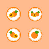 Design Stickers with Ripe Tasty Apricot. Royalty Free Stock Photos