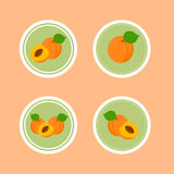 Design Stickers with Ripe Tasty Apricot. Royalty Free Stock Image
