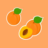 Design Stickers with Ripe Tasty Apricot. Stock Images