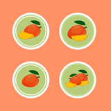 Design Stickers with Ripe Yummy Mango. For the company in vector format Stock Photos