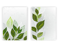 Design with tea leaves Royalty Free Stock Photo