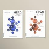 Design template abstract hexagonal shapes Royalty Free Stock Photos