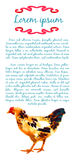 Design template with watercolor hens Stock Photo