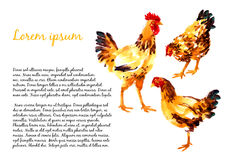 Design template with watercolor hens Stock Photography