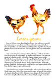 Design template with watercolor hens Royalty Free Stock Images