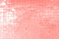 Abstract living coral color background stock images