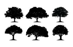Oak Tree Silhouette Cliparts. Design a vector illustration of Oak tree, isolated on white background vector illustration