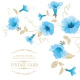 Design of vintage floral card. Royalty Free Stock Images