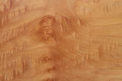 Design of wood texture Stock Photo