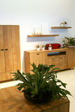 Design with wooden furniture Stock Images