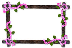 Design wooden photo frames with Bougainvillea flower branches is Royalty Free Stock Photography