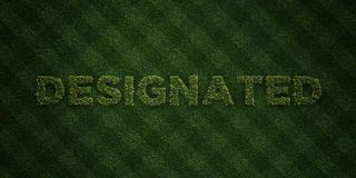 DESIGNATED - fresh Grass letters with flowers and dandelions - 3D rendered royalty free stock image Stock Photo