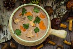 Designazione d'annata selvaggia della zuppa di fungo della foresta dei regali del pasto Fotografia Stock