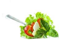 Designazione fresca dell'alimento dell'insalata Immagini Stock Libere da Diritti