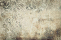 Designed abstract moldy paper background Royalty Free Stock Images