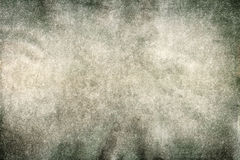 Designed abstract moldy paper background Stock Photo