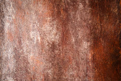 Designed grunge texture or background Stock Image