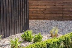 Designen av egenskapen med trästaketet, rullade grus och individuella växter royaltyfri bild