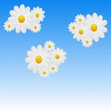 Designer background from clouds with the flowers of white color Royalty Free Stock Photography