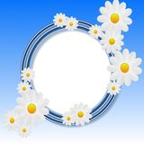 Designer background with the flowers of white color Stock Photos