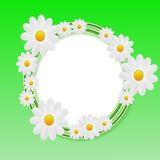 Designer background with the flowers of white color Stock Photography