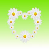 Designer background heart from the flowers of white color Royalty Free Stock Photography