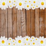 Designer background  from an old wooden surface and flowers Royalty Free Stock Photos