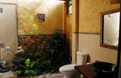 Designer bathroom. A designer bathroom with plants and natural light stock images