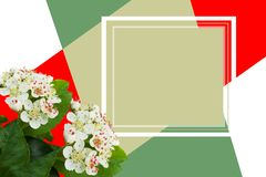 Designer card. Collage of White beautiful flowers. stock image