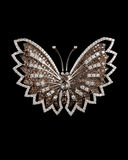 Designer Diamond Butterfly Or Brooch Royalty Free Stock Photos