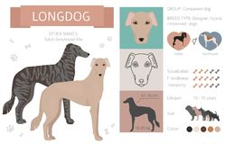 Designer dogs, crossbreed, hybrid mix pooches collection isolated on white. Flat style clipart infographic. Vector illustration vector illustration